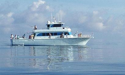 Pensacola Fishing Charters 10