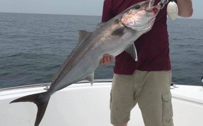 Pensacola Fishing Charters Report